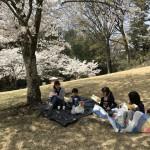 2018.4.2春行事_180512_0004_R